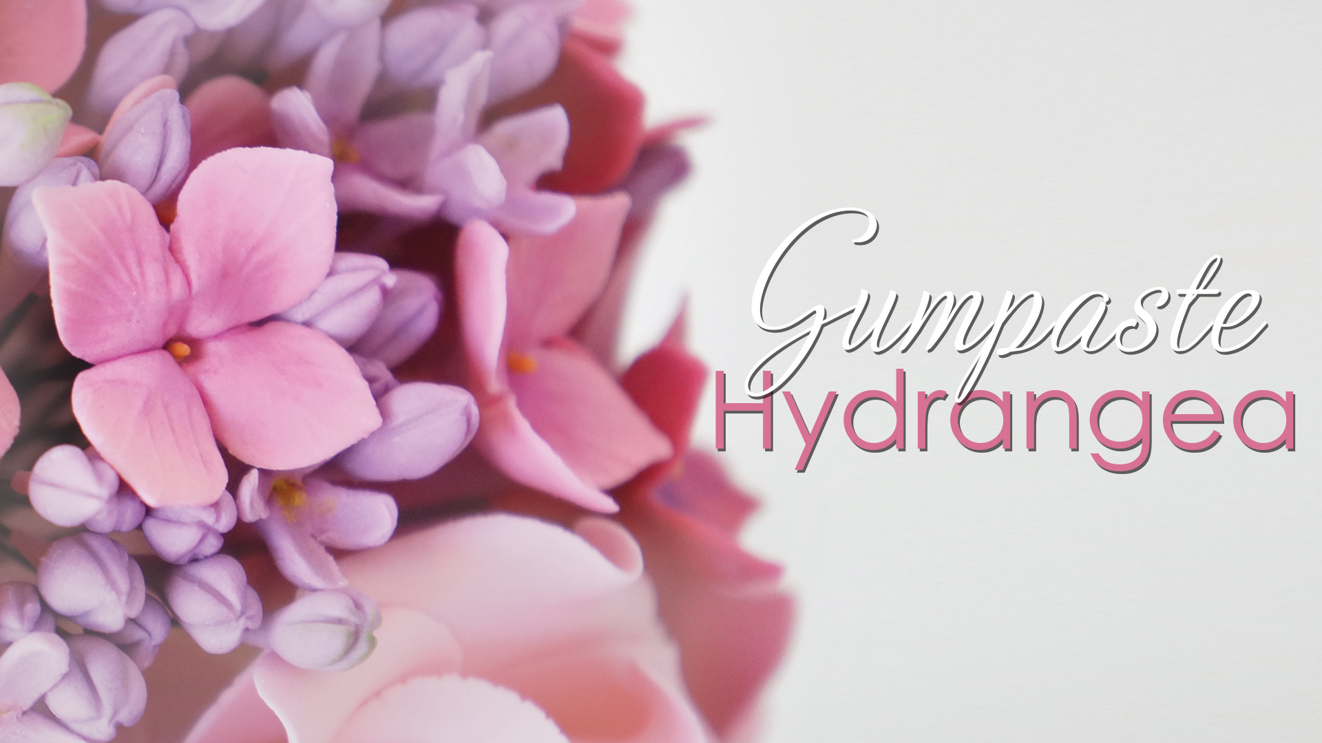 Click to view my hydrangea cake decorating tutorial
