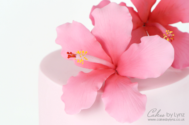 Gumpaste hibiscus flower tutorial