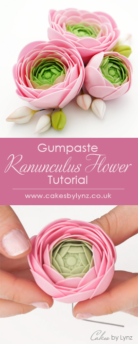Ranunculus Flower tutorial