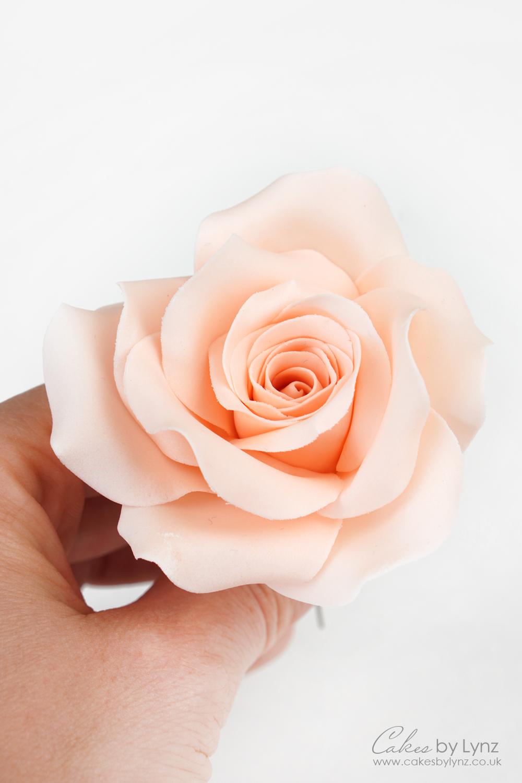 free gumpaste rose video tutorial